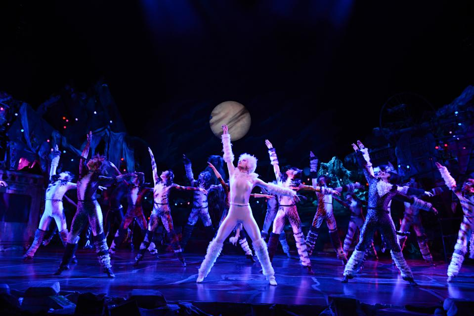 The cats of the London/West End Cats musical 2019 tour production by Cameron Mackintosh and Andrew Lloyd Webber's The Really Useful Theatre Group. (PHOTO: CATS Tour 2019/Alessandro Pinna)