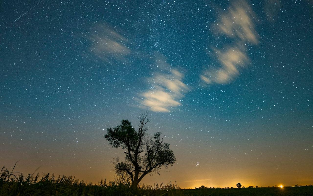 When is the Perseid Meteor shower and how can I see it?