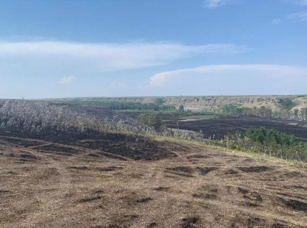 Visible here are some of the areas on the Siksika Reserve that were burned when deliberate fires were set. (Terri Trembath/CBC Calgary - image credit)