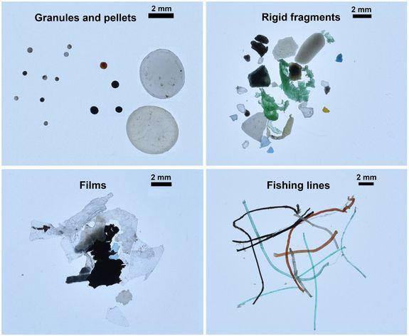 Different categories of microplastics found in the Arctic Ocean.