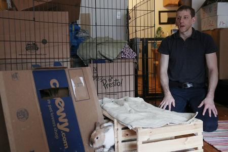 Jacob Levitt looks on while one of his eight adopted bunnies goes through a box, at his apartment in New York, U.S., April 11, 2019. Picture taken April 11, 2019. REUTERS/Shannon Stapleton