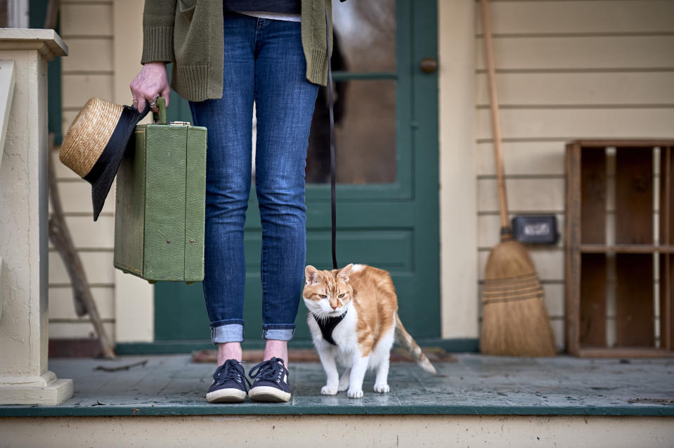 a girl and her cat are going on a vacation
