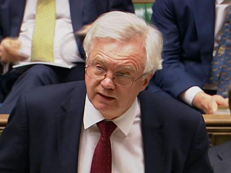 David Davis said it was 'unnecessary' to amend the Brexit Bill to make sure Parliament is given a final vote on Brexit: BBC News