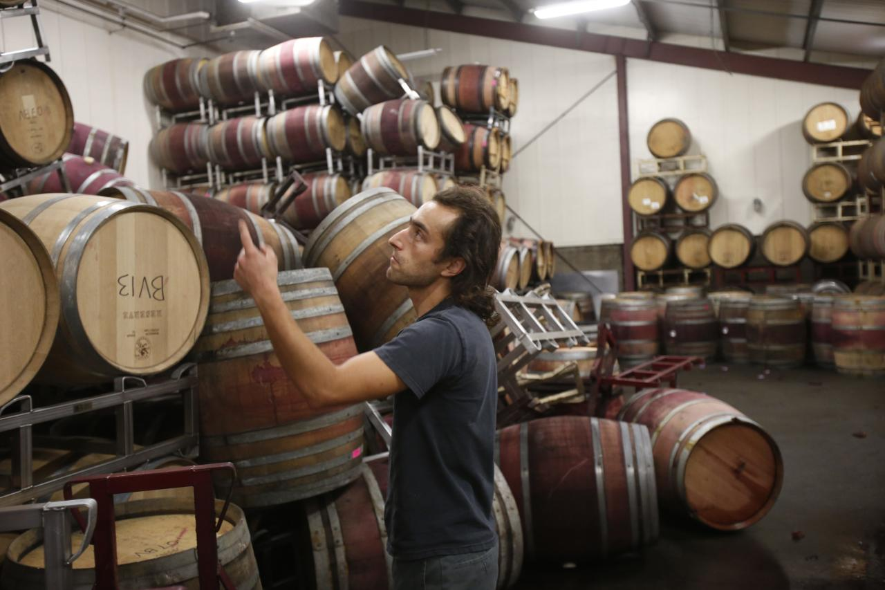 Andrew Brooks, associate winemaker of Bouchaine Vineyards, points at undamaged wine barrels adjacent to the fallen barrels after a 6.0 earthquake in Napa, California August 24, 2014. A 6.0 earthquake rocked wine county north of San Francisco early Sunday, injuring dozens of people, damaging historical buildings, setting some homes on fire and causing power outages around the picturesque town of Napa. The quake, the biggest in the region in 25 years, jolted many residents out of bed when it hit at 3:20 a.m. (1020 GMT). It was centered 6 miles (10 km) south of the city of Napa, which is located about 50 miles northeast of San Francisco. REUTERS/Stephen Lam (UNITED STATES - Tags: DISASTER ENVIRONMENT FOOD)