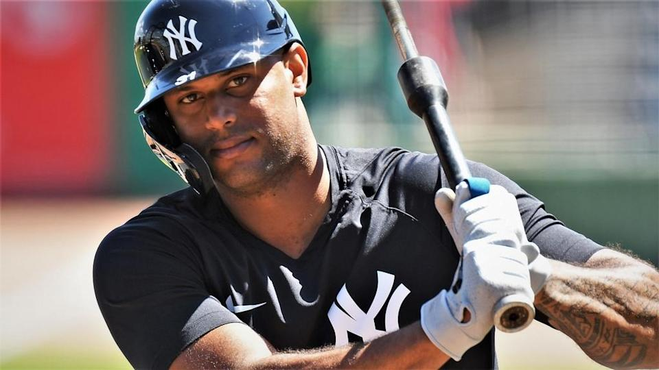 New York Yankees outfielder Aaron Hicks (31) prepares to take batting practice before the game against the Philadelphia Phillies during spring training at BayCare Ballpark. Mandatory Credit: Jonathan Dyer-USA TODAY Sports