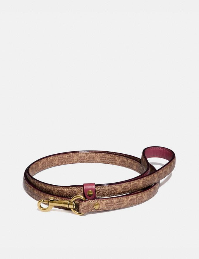 <p>Take your dog on park walks in this pretty <span>Small Pet Leash</span> ($85).</p>