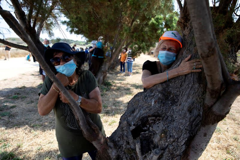 Hugging a tree in Israel to beat the coronavirus blues
