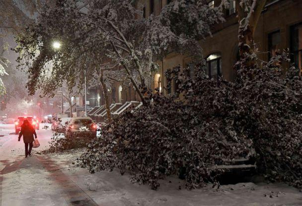PHOTO: A tree collapsed on top of a parked car in Manhattan on Nov. 15, 2018 in New York. (Angela Weiss/AFP/Getty Images)
