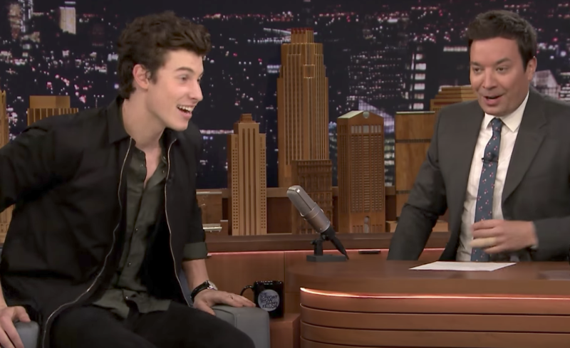 Shawn Mendes on That Time Drake's Security Had Him Shook