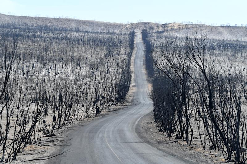 A general view of the damage done to the Flinders Chase National Park after bushfires swept through on Kangaroo Island.