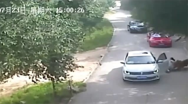 The incident was caught on security camera at the park. Photo: LiveLeak