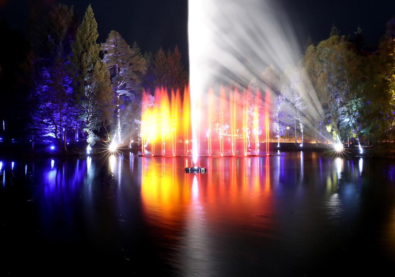 <p>Trees are illuminated at The Enchanted Forest sound and light show in Faskally Wood in Pitlochry.<br /> (Andrew Milligan/PA Wire/PA Images) </p>