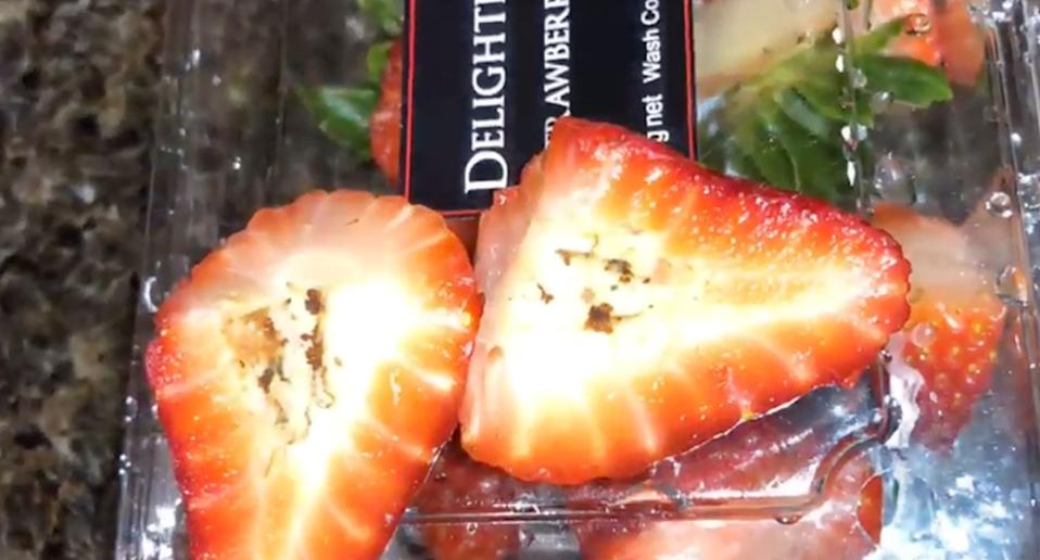 Strawberries shown with maggots and eggs after Coles customer purchased berries from store south west of Sydney.