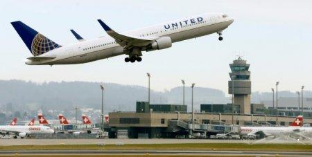 United Halts New Reservations for Animals Traveling in Cargo