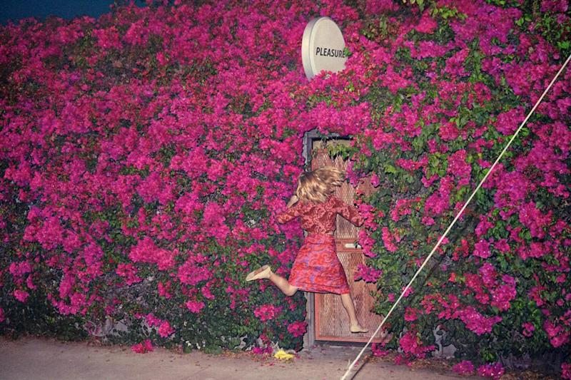 New album: Feist's Pleasure
