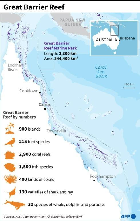 """The Great Barrier Reef -- the world's largest living structure, visible from space -- was added to the World Heritage list in 1981 for its """"superlative natural beauty"""" and extensive biodiversity"""