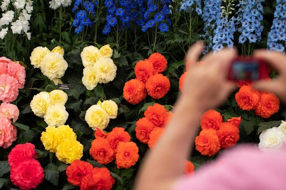 The flower show is normally held in the spring and features extravagant displays of blooms (Aaron Chown/PA) (PA Archive)