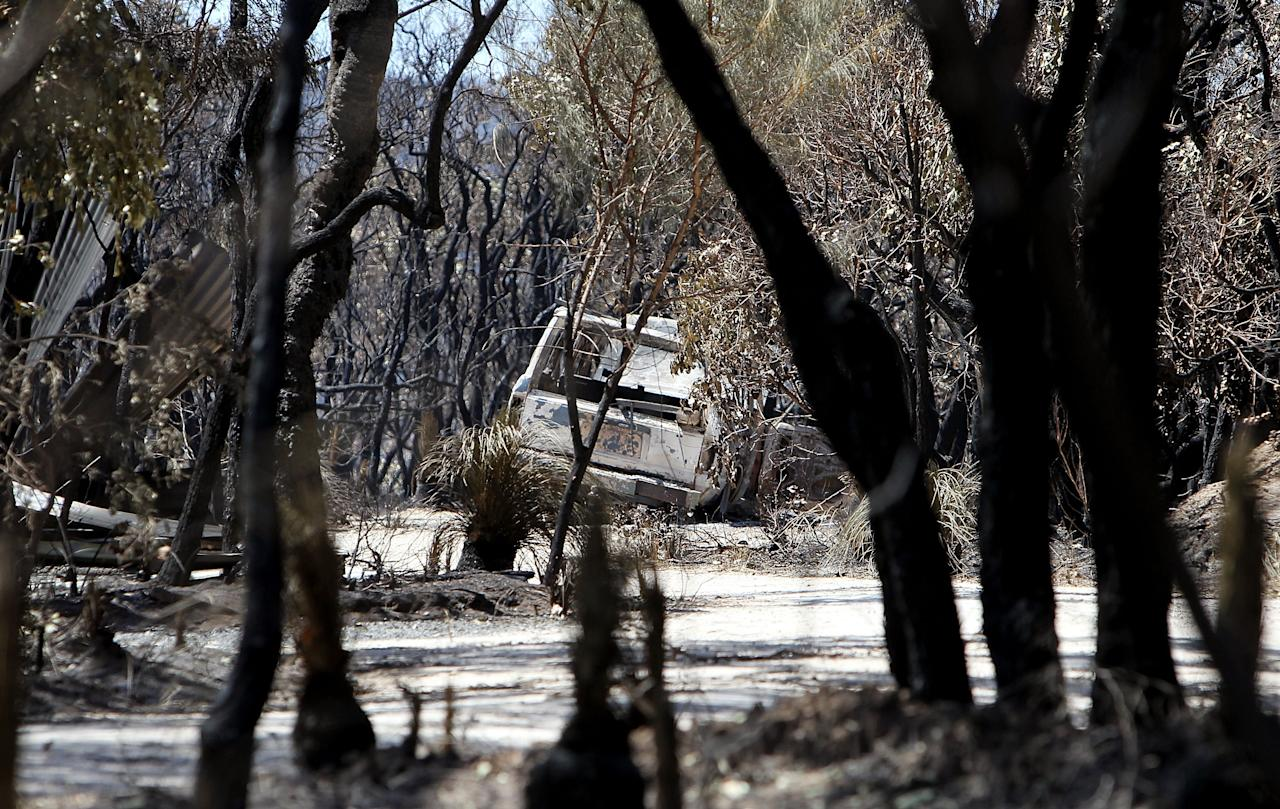 MARGARET RIVER, AUSTRALIA - NOVEMBER 25:  Trees are scorched on Orchard Ramble following a bush fire on November 25, 2011 in Margaret River, Australia. 4000 hectares of forest and over 30 properties have been destroyed as bush fires continue to burn around Western Australia. Residents from the town of Prevelly fled to the beach for safety and then had to evacuate on jet ski as the bush fires reached the sands. Two additional fires are burning north of the town of Denmark and fire crews are hoping light rains expected today will help with them distinguish the blazes.  (Photo by Will Russell - Pool/Getty Images)