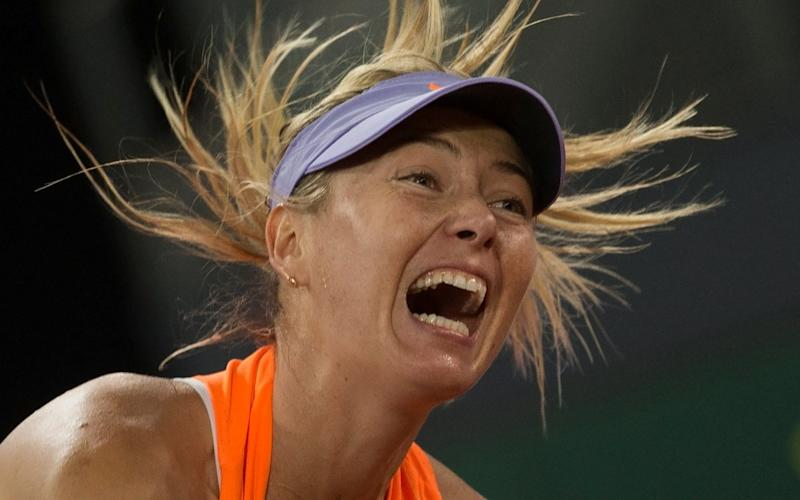 High decibels: Maria Sharapova is one of her sport's louder players - REUTERS