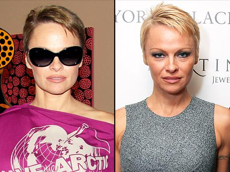 Pamela Anderson Goes Brunette, Dyes Her Pixie Cut Brown: See the Picture