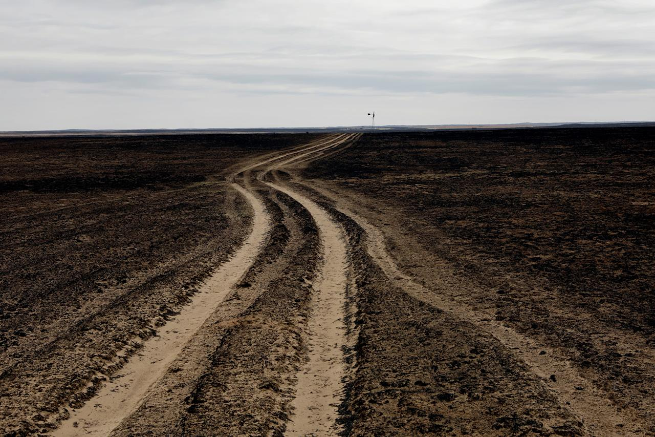 <p>A country road leads through a pasture burned by wildfires near Glazier, Texas, March 12, 2017. (Photo: Lucas Jackson/Reuters) </p>