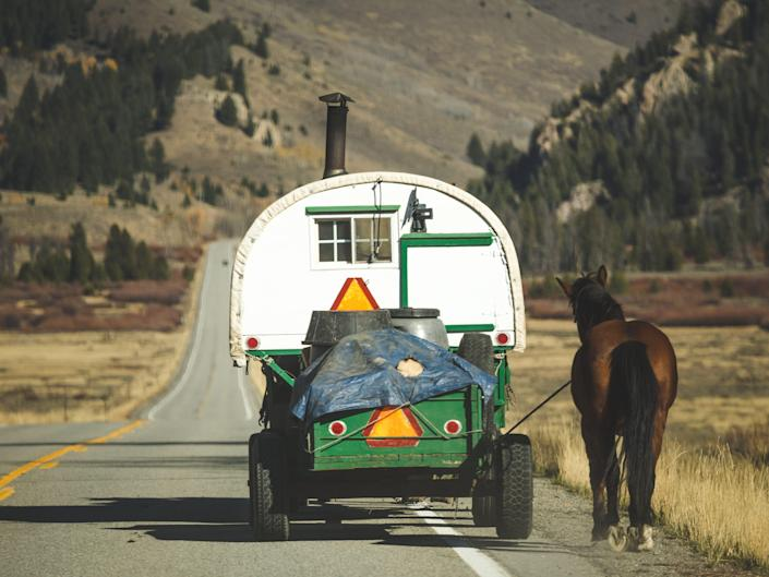 Sheep herder's carriage rolls down the highway in Ketchum, Idaho, USA