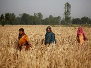 A new study reveals that rural women have the resilience to cope with climate risks