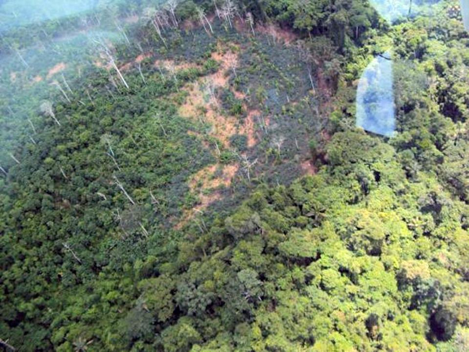 The killings of six illegal gold miners were carried out by the Yanomami tribe in the Amazonian state of Roraima on the frontier with Venezuela (AFP Photo/Morsaniel Iramari)