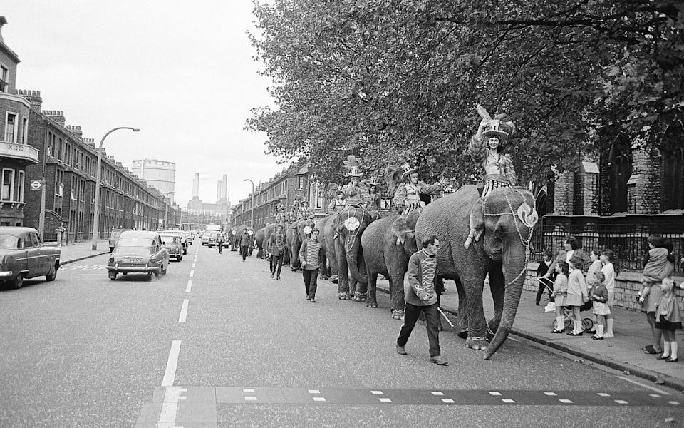 BATTERSEA, LONDON - circa 1968: Billy Smart's Circus Elephants with riders and mahouts and trainers march along Queenstown Road in South London with Battersea Power Station in the distance circa 1968. (Photo by Chris Morphet/Redferns)  - Getty