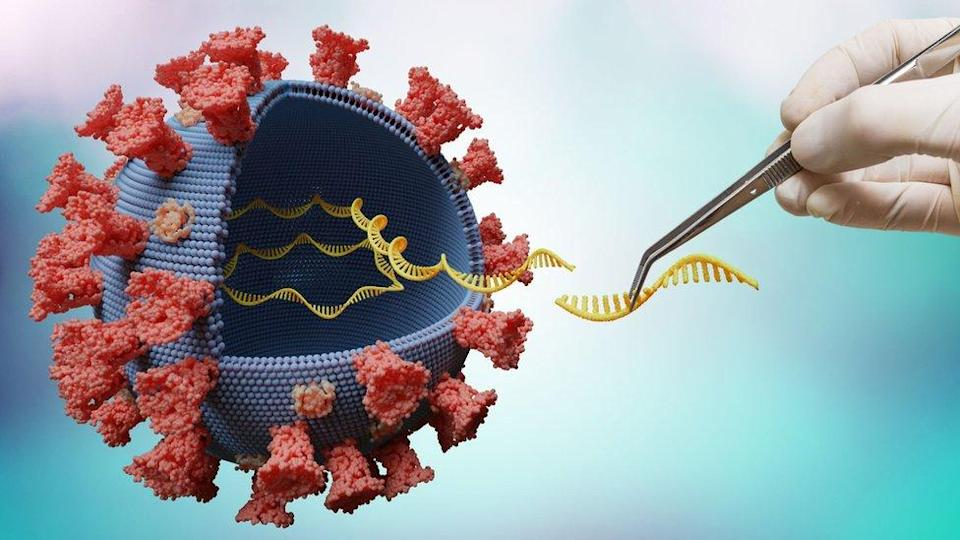 An artistic impression of virus sequencing