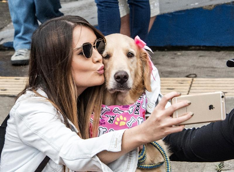 People celebrated in the streets of San Jose after a new law which establishes fines and prison sentences for those who harm an animal