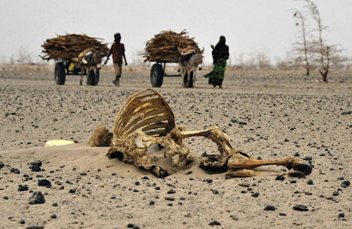 Developing countries want compensation for climate-change induced losses and damage (AFP Photo/Simon Maina)