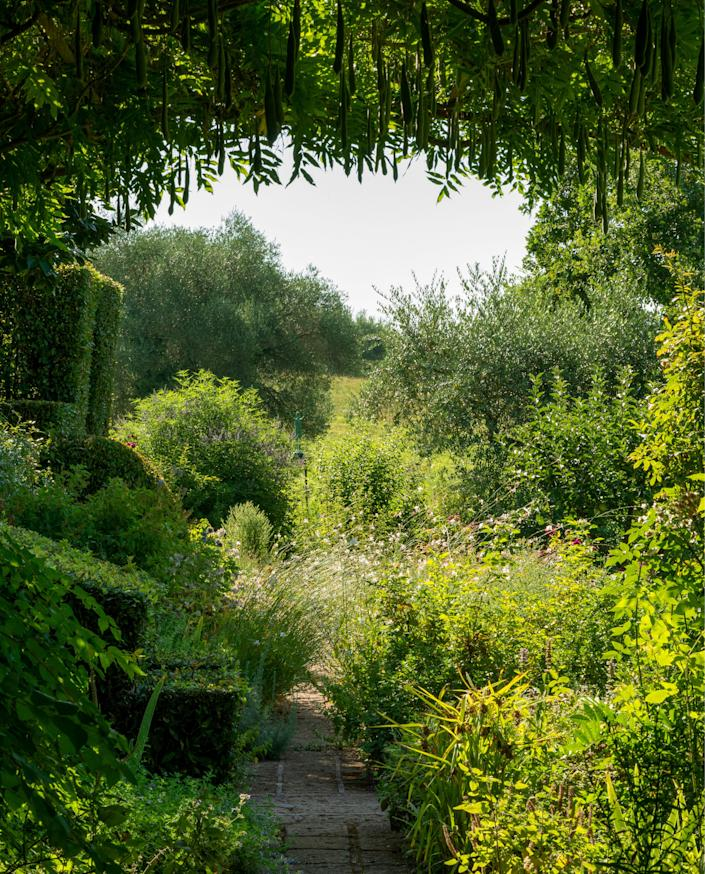 """<div class=""""caption""""> A tufa-stone garden path flanked by herbaceous borders and partly shaded by a wisteria pergola at the Tuscan retreat of Federico Forquet. </div> <cite class=""""credit"""">Guido Taroni </cite>"""