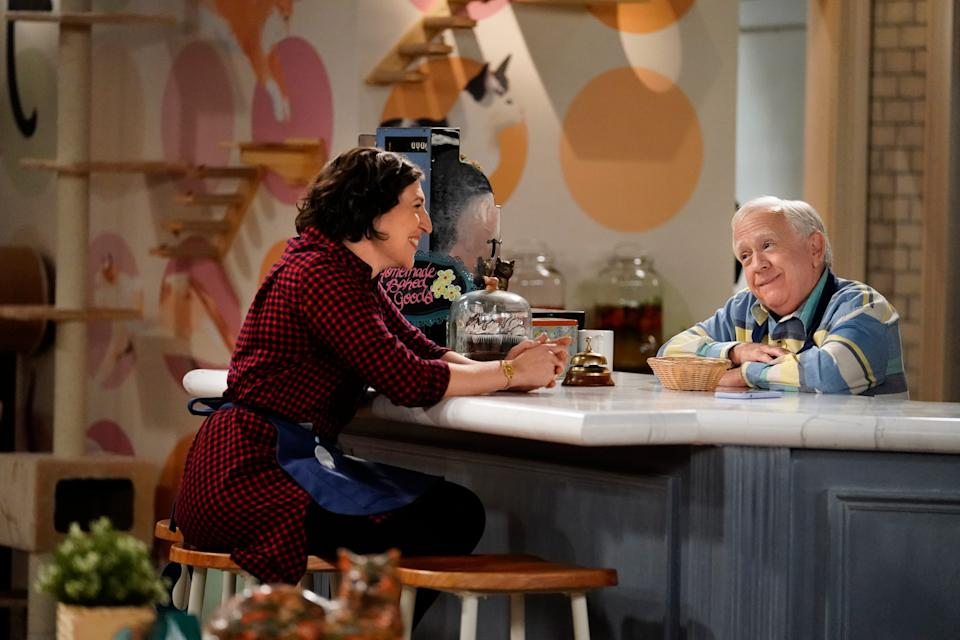 Kat (Mayim Bialik), left, and Phil (Leslie Jordan) work together in Kat's cat cafe in the new Fox comedy, 'Call Me Kat.'