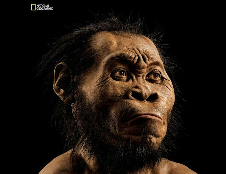 A reconstruction of a Homo Naledi species by paleoartist John Gurche at his studio in Trumansburg (AFP Photo/)