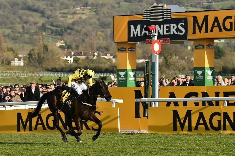 Al Boum Photo is aiming for a third consecutive win at the Cheltenham Gold Cup