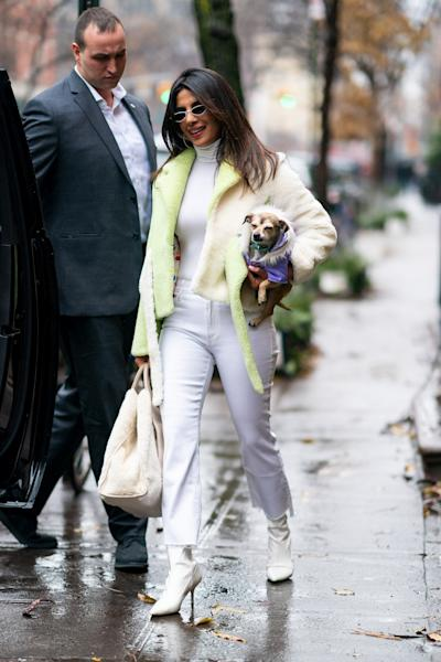 Priyanka Chopra is back in New York City after her wedding to Nick Jonas and is spending time with her dog Diana.