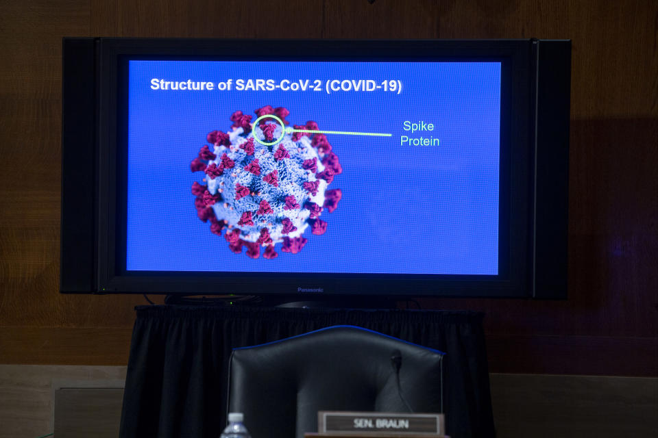 A monitor depicts the structure of SARS-CoV-2 during a Senate Health, Education, Labor and Pensions Committee hearing to discuss vaccines and protecting public health during the coronavirus pandemic on Capitol Hill, Wednesday, Sept. 9, 2020, in Washington. (Michael Reynolds/Pool via AP)