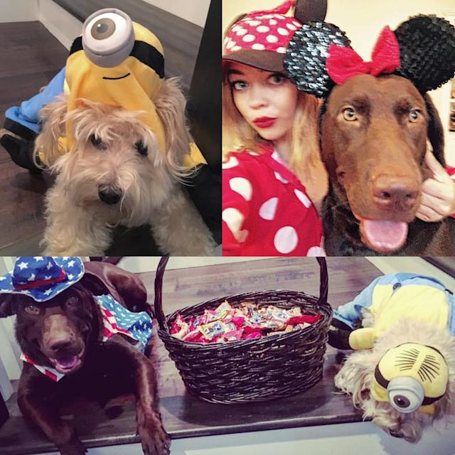 "<p>Dog lover and <em>Modern Family</em> star Sarah Hyland was sure to include her dogs in her <a href=""https://www.instagram.com/p/BMSvJEhDJZe/?taken-by=sarahhyland"" rel=""nofollow noopener"" target=""_blank"" data-ylk=""slk:2016 festivities"" class=""link rapid-noclick-resp"">2016 festivities</a>. (Photo: Instagram/Sarah Hyland) </p>"