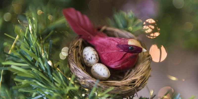 This Is What It Means When You See A Bird S Nest Ornament On A