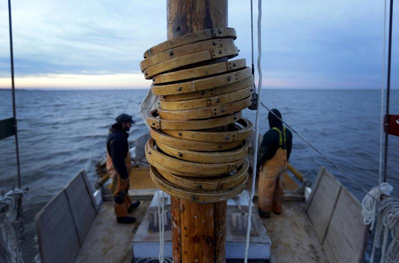 In this Dec. 20, 2013 picture, wooden hoops attached to the mainsail rest on the mast of the skipjack Hilda M. Willing as Shawn Sturgis, back left, and Danny Benton prepare for a day of oyster dredging in Tangier Sound near Deal Island, Md. While the skipjack was the vessel of choice for oystermen who made their living on the Chesapeake Bay around the turn of the 20th century, today only a handful are used for commercial dredging during Maryland's oyster season. (AP Photo/Patrick Semansky)