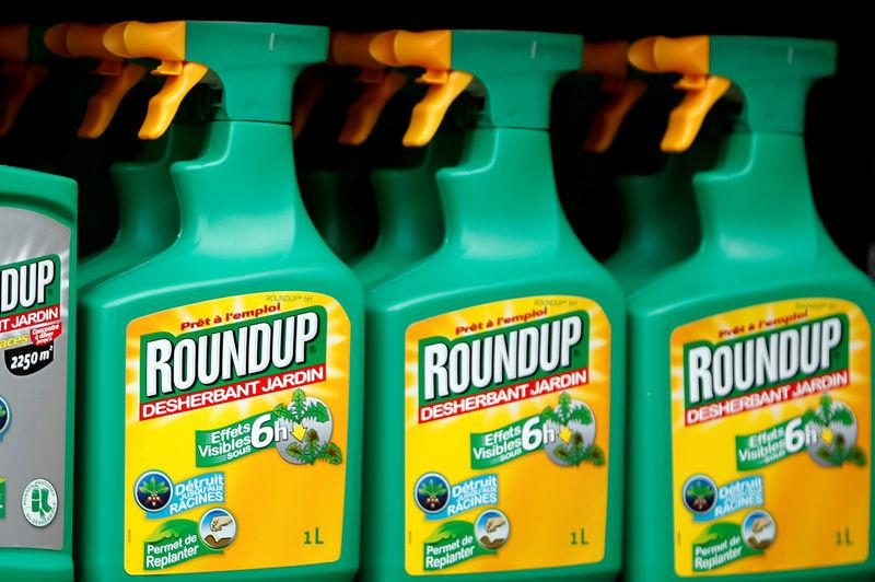FILE PHOTO: File photo of Monsanto's Roundup weedkiller atomizers displayed for sale at a garden shop at Bonneuil-Sur-Marne near Paris