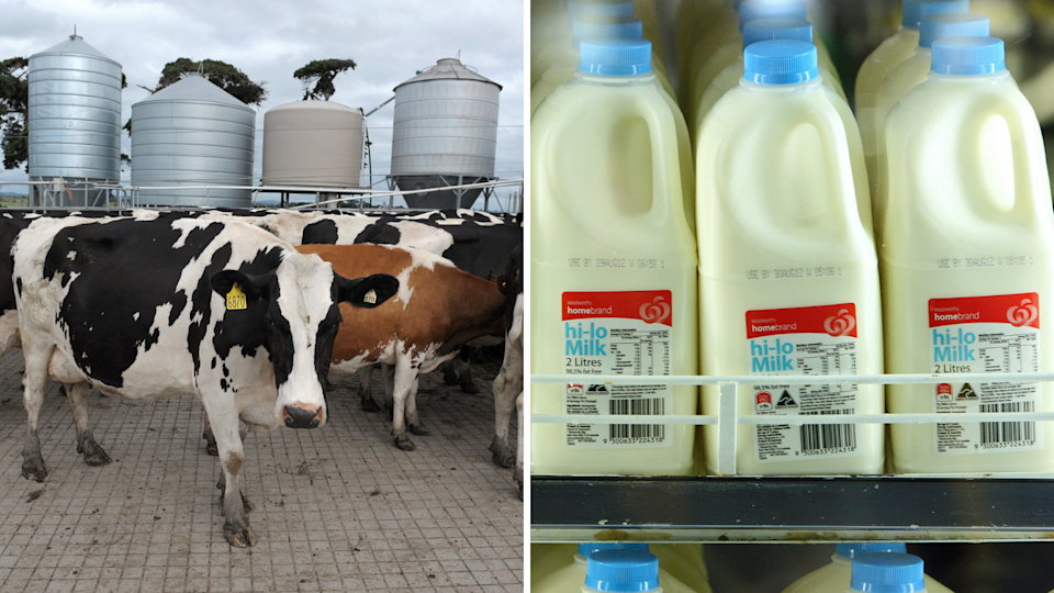Why higher milk prices helps no one. Source: Getty Images