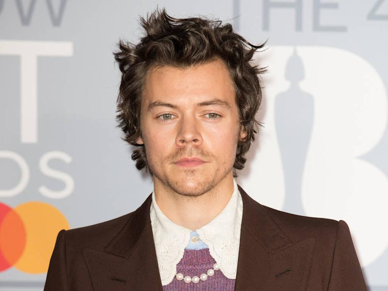 Harry Styles doesn't want to force Lizzo collaboration