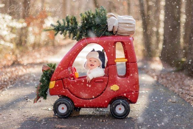"""<p>Mini-versions of things are always funny, and this shot of a baby toting home the family Christmas tree is a good example. <i>(Photo: <a href=""""http://www.clearlyperceivedblog.com/2014/02/25/shoot-share-2013-photo-contest/"""">Clearly Perceived Photography</a>)</i> </p>"""