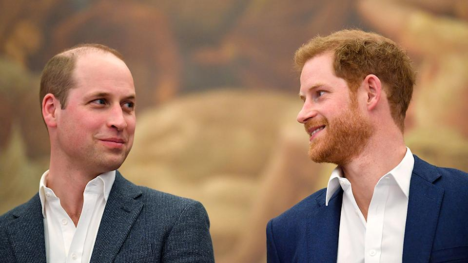 Prince Harry and Prince William look on good terms as expert says they mend rift