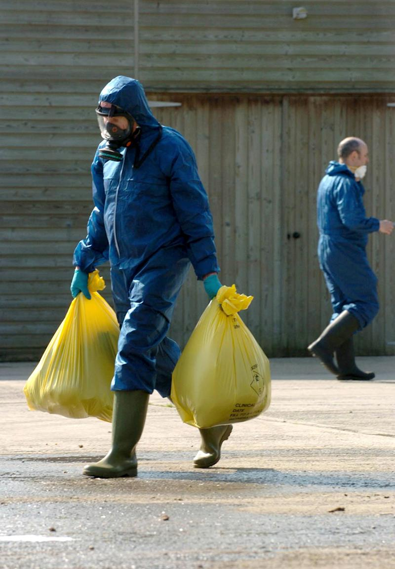 An unidentified DEFRA worker carries bags marked as 'Clinical Waste' at a farm in Hockering, Norfolk, where 35,000 chickens are to be slaughtered after a number of dead chickens tested positive for bird flu.