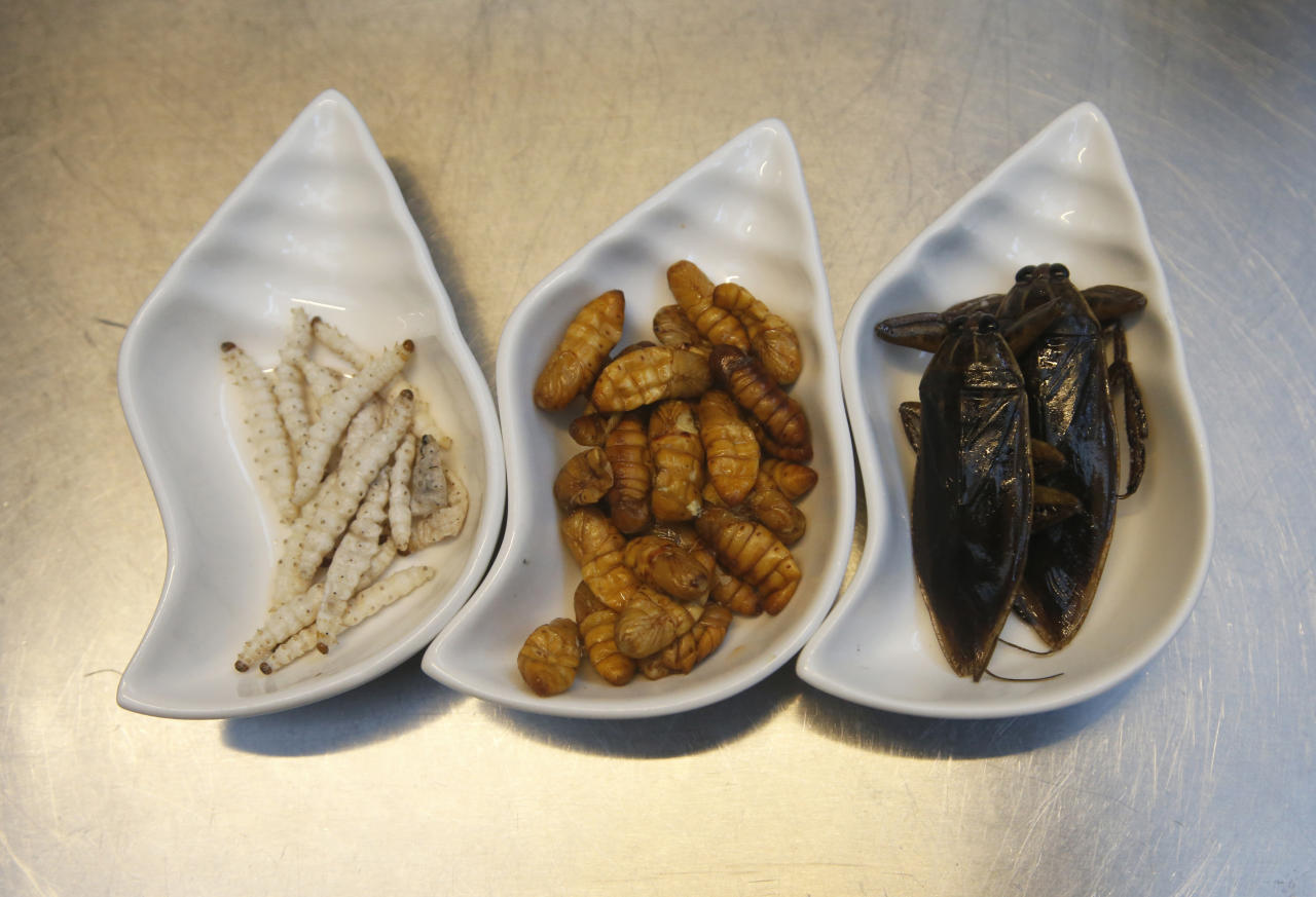 FIXES TYPOS - In this Tuesday, Sept. 12, 2017, photo, from left to right, bamboo worms, silkworms and giant water beetles are some of the ingredients used at Insects in the Backyard restaurant, in Bangkok, Thailand. Tucking into insects is familiar in Thailand, where street vendors pushing carts of fried crickets and buttery silkworms feed locals and tourists alike. But bugs are now fine-dining at a restaurant aiming to revolutionize views of nature's least-loved creatures. (AP Photo/Sakchai Lalit)
