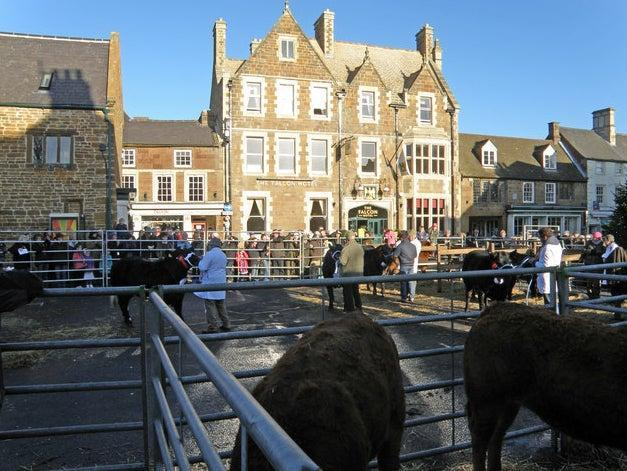 <p>Uppingham is known for its winter fatstock show</p> (Michael Trolove)
