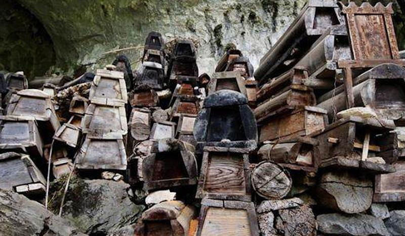 Coffins sold to timber mills in eastern China to be made into furniture after ban on burials